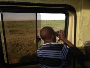 Mazera game-viewing in the Serengeti