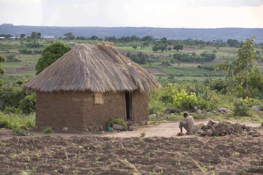 Nyamuswa Home Scene
